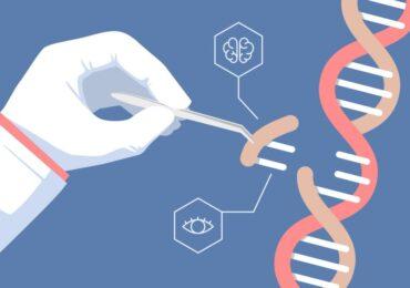 ¿Podemos curar las enfermedades raras?