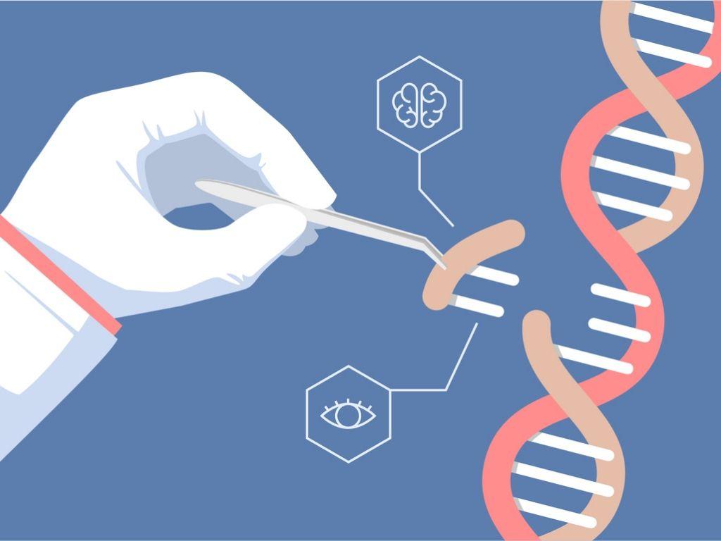 Terapia génica para tratar las EERR